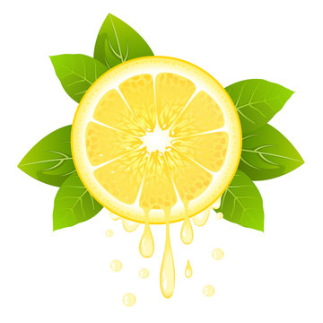 Realistic lemon slice with leaves and drops of juice. Juicy fruit. Fresh citrus design on white vector illustration