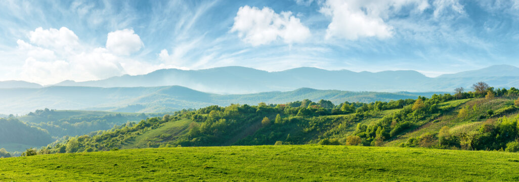 panorama of beautiful countryside of romania. sunny afternoon. wonderful springtime landscape in mountains. grassy field and rolling hills. rural scenery