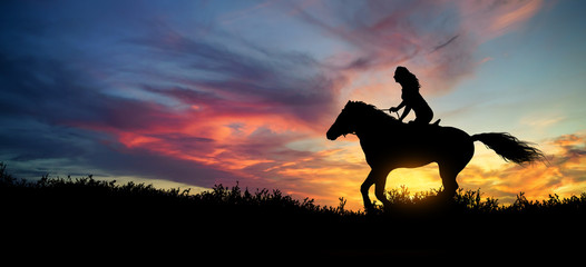 Silhouette of a woman at horse at sunset