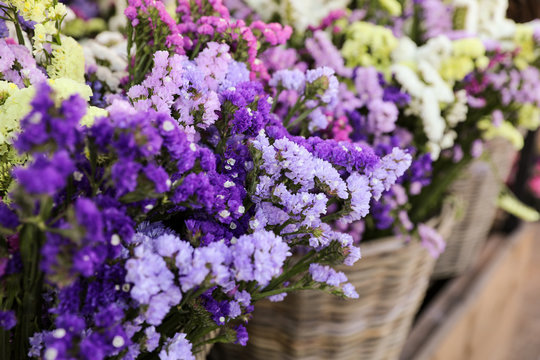 Variety of limonium sinuatum or statice salem flowers in blue, lilac, violet, pink, white, yellow colors in the garden shop.