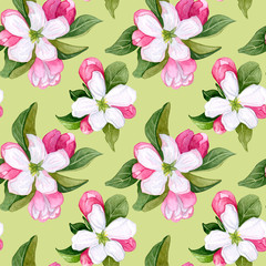 Seamless pattern with pink  and white flowers apple and peach.