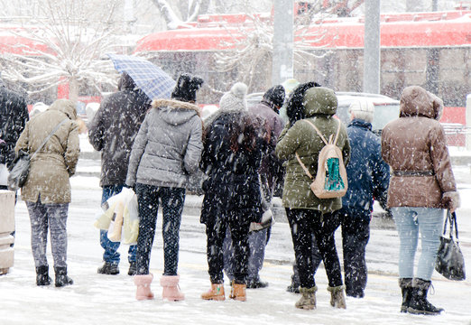 People waiting for public transport at bus stop in heavy blizzard in winter