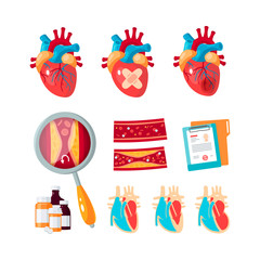 Vector set of cardiology icons in flat style