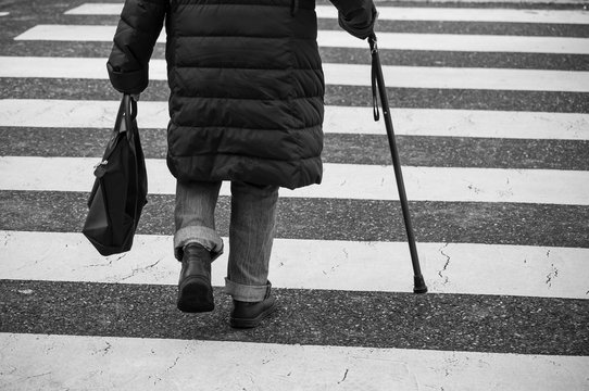 closeup of aged woman walking with stick in the street on zebra on back view