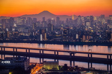 Tokyo city view with Mt. Fuji at twilight