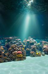 Sea or ocean underwater seabed