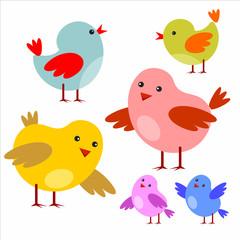 Little cartoon colorful birds