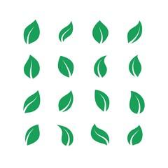 Flat leaves set. Green simple forest leaf, herbal vegan plant set, eco fresh energy labels. Vector green farm leaves set