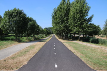 Straight cycle lane for bicycles at the Zevenhuizerplas in Oud Verlaat in the Netherlands.
