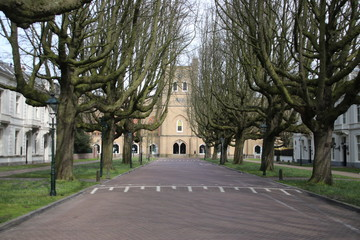Street named Sophialaan with very special growed trees ending at the former royal horse place of king Willem II