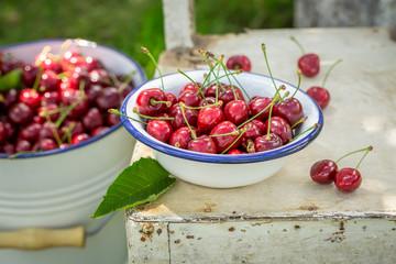 Freshly harvested sweet cherries in a summer garden