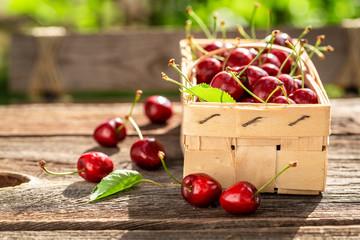 Freshly harvested sweet cherries in wooden punnet