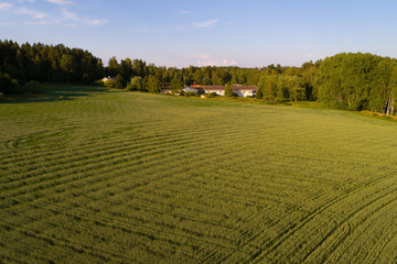 July sunny evening in rural Finland (aerial photography). Snapertuna, Finland