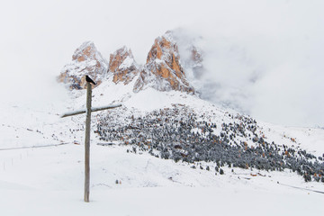 raven on cross in front mountains.  Dolomites. Italy