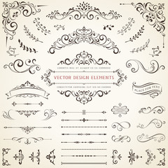Ornate vintage design elements with calligraphy swirls, swashes, ornate motifs and scrolls. Vector illustration.