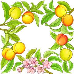 peach vector frame