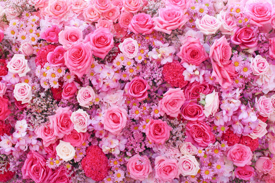 Colorful multicolored ornamental of beautiful pink roses blooming patterns group with  daisy and  carnation texture on wall for background