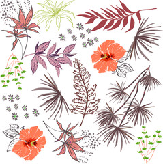 beautiful floral design with mixed leaves white background