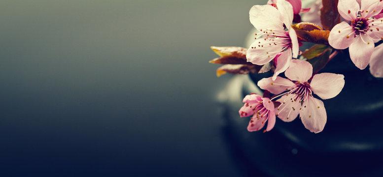 Spa dark background with flowers