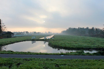 Fog over the ditch and meadows during sunrise with swans in the grass at Park Hitland in Nieuwerkerk aan den Ijssel in the Netherlands