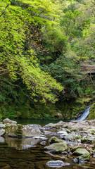 Triple of the mountain stream  三重県赤目四十八滝