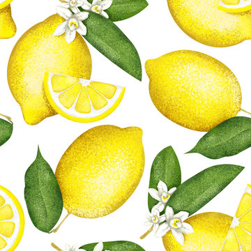 Trendy seamless lemon pattern on white. For textiles and fabric