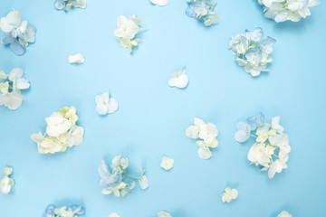 White and Blue Hydrangea Flower Background Floral Flatlay