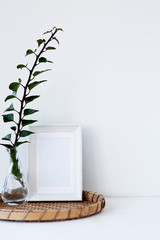 interior decor in a minimalist style, ideas. glass vase and green plant in a bright room