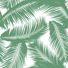 Vector Feathers. Tropical Seamless Pattern with Exotic Jungle Plants. Coconut Tree Leaf. Simple Summer Background. Illustration EPS 10. Vector Feathers Silhouettes or Hawaiian Leaves of Palm Tree.