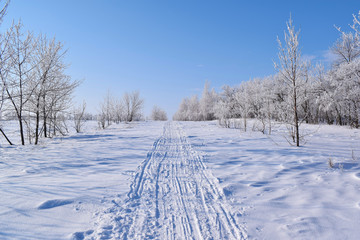 Beautiful winter landscape.Frosty Sunny day.Scenic view.