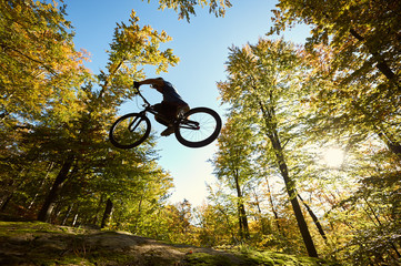 Low angle view of sportsman cyclist jumping on trial bicycle, professional rider making acrobatic trick on big boulder in the forest on summer sunny day. Concept of extreme sport active lifestyle
