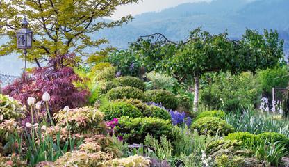 ogród, garden, domek letni, domek drewniany, klon złoty, góry, ogródek, chmury,  działka, drzewa, kwiaty, pięknie, zielona trawa, trawnik, klon palmowy, różaneczniki, azalie