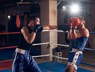 Two male angry fighters practicing kick boxing in the ring at the health club
