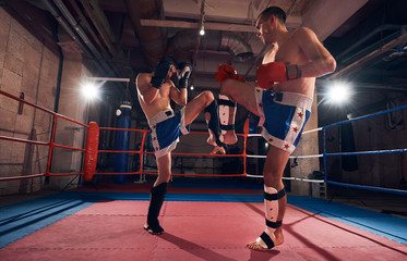 Two active men boxers training kickboxing, fighting in the ring at the health club