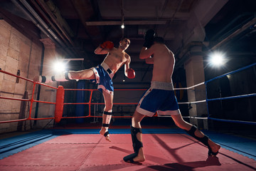 Strong sportsman kick boxers exercising kickboxing with sparring partner in the ring at the sport club