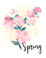 Spring lettering. greeting cards, banners and invitation card with blossom sakura flowers. Color pink sakura cherry blossom flower.