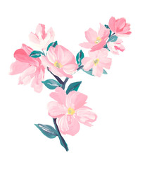 blossoming branch of pink blossoms. t-shirt design