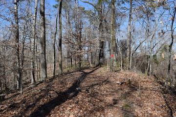 Lost Bluff hiking trail near Grenada, Mississippi