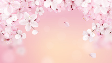 Beautiful print with blossoming light pink sakura flowers with place for text. Cherry on the background of the dawn. Vector illustration.