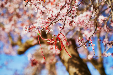 Branch of blossoming cherry tree with red and white martisor