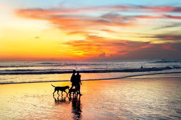 couple walking dogs, sunset Bali