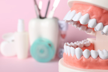 Educational model of oral cavity with teeth on blurred background, closeup. Space for text