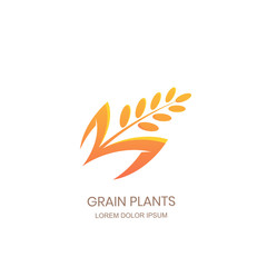 Grain plants logo sign concept. Rice, wheat, rye cereal icon. Vector design for flour package, bread label, bakery shop