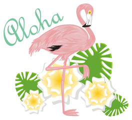 flamingo, pink flamingo, pink bird, bird, feathered, pink, animal, zoo, paradise, summer, flowers, aloha