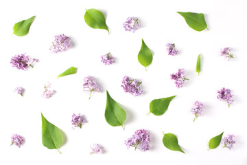 beautiful pattern of fresh flowers and leaves lilac on white background. top view, flat lay