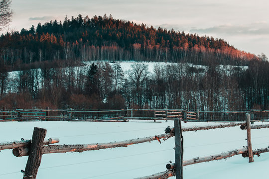Nice czech winter landscape with empty ranch fence