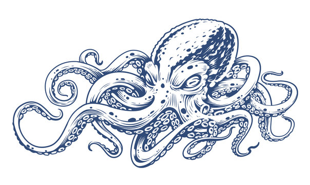 Octopus Vintage Vector Art