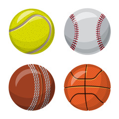 Isolated object of sport and ball symbol. Collection of sport and athletic stock vector illustration.