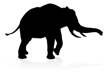 An elephant safari animal silhouette