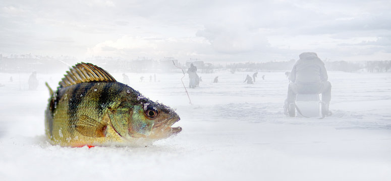 Winter fishing on the river.